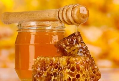 Попробуйте разные сорта мёда на медовом фестевале